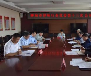 市律师行业党委召开第十三次会议